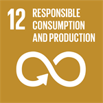 Theglobalgoals Icons 12
