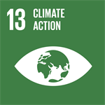 Theglobalgoals Icons 13